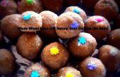 Harina de trigo integral y Natural goma de galletas (sin hornear)