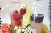 Floral Lemonade-limonada caminó encima de una muesca