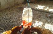 Alimentador de agua de pollo.