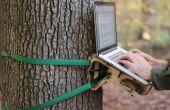 Escritorio de árbol en pie