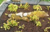 Artificial pantano de la turba para plantas carnívoras