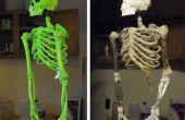 DIY esqueleto hechas de palos, cuerdas, espuma y Mache'