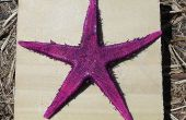 Estrella de mar en un pedazo de madera