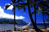 Vacaciones en Hawai