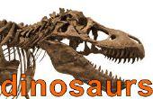 Cómo participar en el concurso de dinosaurio - resultados!