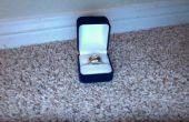 Caso, compartimiento oculto del anillo