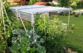 Construir un refugio para el cultivo de tomates