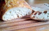 No amasar | Receta de pan casero