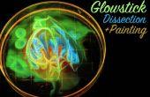 Disección de Glowstick y pintura