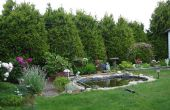 Como jardín! Conceptos básicos