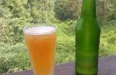 Refrescante cerveza alcohólica de jengibre con naranja