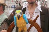 Arrrr Me Hardys - Tis el pirata de Segway!