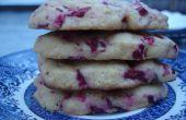 Arándano galletas nevera