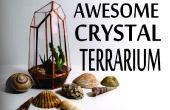 Terrario de cristal geométricos de cajas de CD