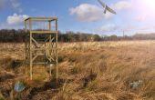 Torre de la observación de vida silvestre