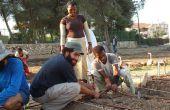 Cómo crear un jardín comunitario