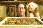 Alimentos a través de la plataforma de madera del gato