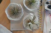 Flor en el ojal / imán de nevera (impreso 3D con planta de aire y el imán)