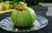Calabacín (Zucchini) los tazones de fuente (GF)