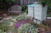 Las abejas de patio trasero en los suburbios