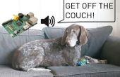 Entrenador de perros invisibles