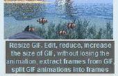 Freeware Gif Resizer para cambiar el tamaño de gif animado online