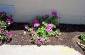 Propagar plantas la manera fácil... Con fácil a hacer Mini invernaderos