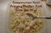 Arroz de resurrección: Traer arroz viejo de entre los muertos
