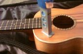 Pez dispensador de ukelele / humidificador de guitarra