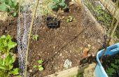 Cómo construir un enrejado bajo costo huerto