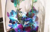 Hermosos centros de mesa orquídeas