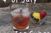 ¿4 frutal de cubitos de hielo de julio