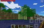 Cómo hacer árbol W Sugare caña en él