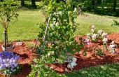 BRICOLAJE jardín enrejado