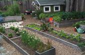 Agricultura urbana: Levantado jardinería cama