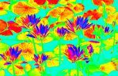 Super fácil infrarrojo como fotos (Photoshop)