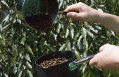 Ase su propio café [método Whirley Pop]