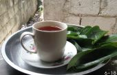 Té de hojas de Guanabana!!! Cáncer FREEEE!!!!!!
