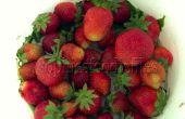 Libre de gluten-sin lactosa sin hornear tartaletas de fresa
