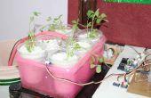 Multiuso hidroponía y suelo jardinería solución