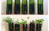 Vino de reciclado botellas en macetas de interior hierba