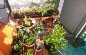 Simple y escalable de frambuesa pi irrogation jardín