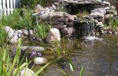 Estanque o jardín de agua - cómo construir el estanque del patio