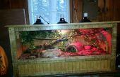 Automático caja de reptil
