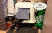 Detector de caca basura caja