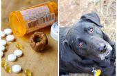 Píldora de bolsas para perros