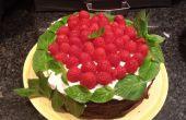 ¿Pila doble Brownie, frambuesa orgánico y menta pastel con glaseado de queso crema