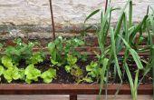 Plantador de patio trasero y asientos