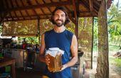Cómo iniciar su primer cervecería de Kombucha Mini