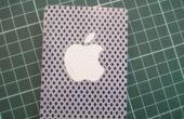 Caso de la tarjeta de iPod nano